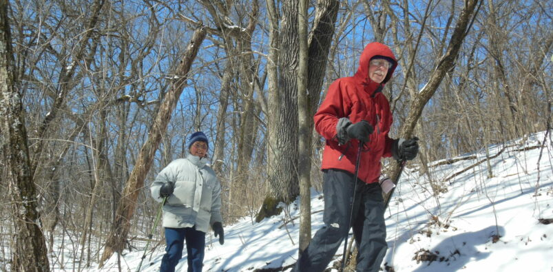 A couple is snowshoeing on a sunny blue-bird day